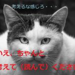 将棋の初心者・中級・上級・段位での読み筋の違いと勉強・上達方法!